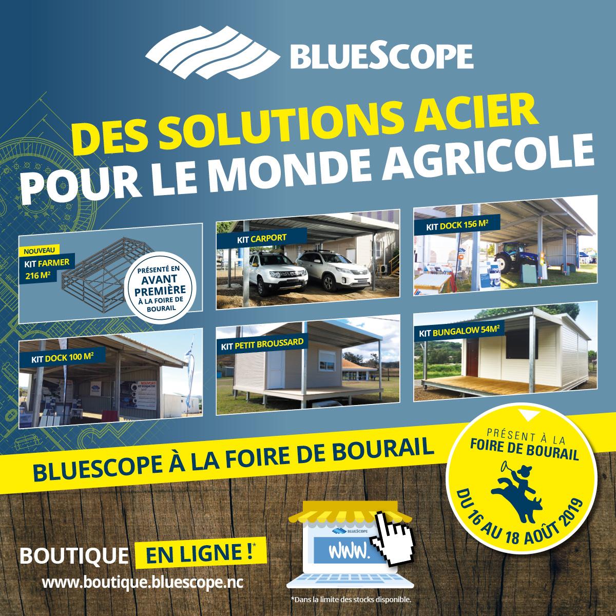 Coup d'Ouest - Bluescope
